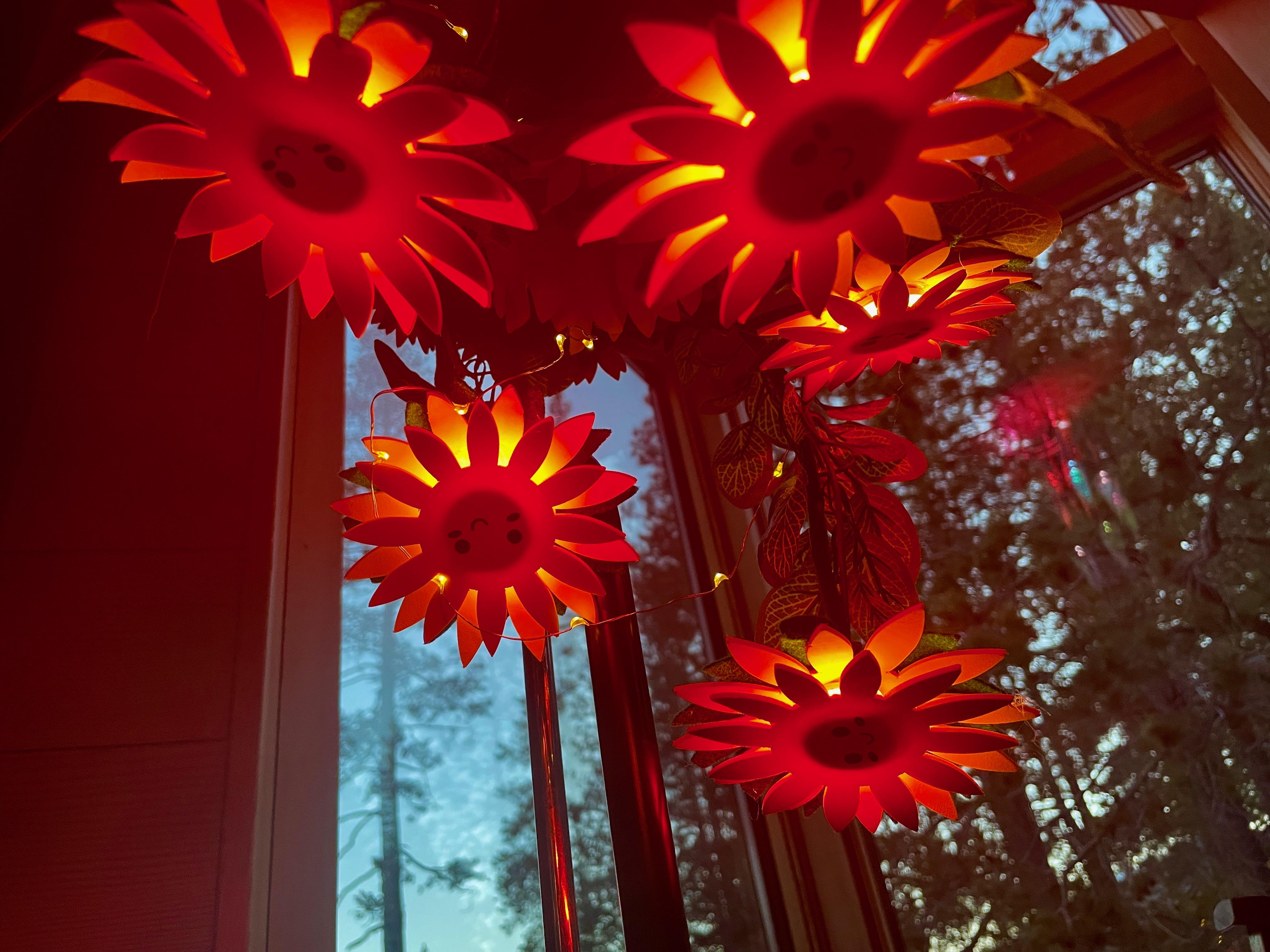 led_strips_sunflowers_sky.jpeg