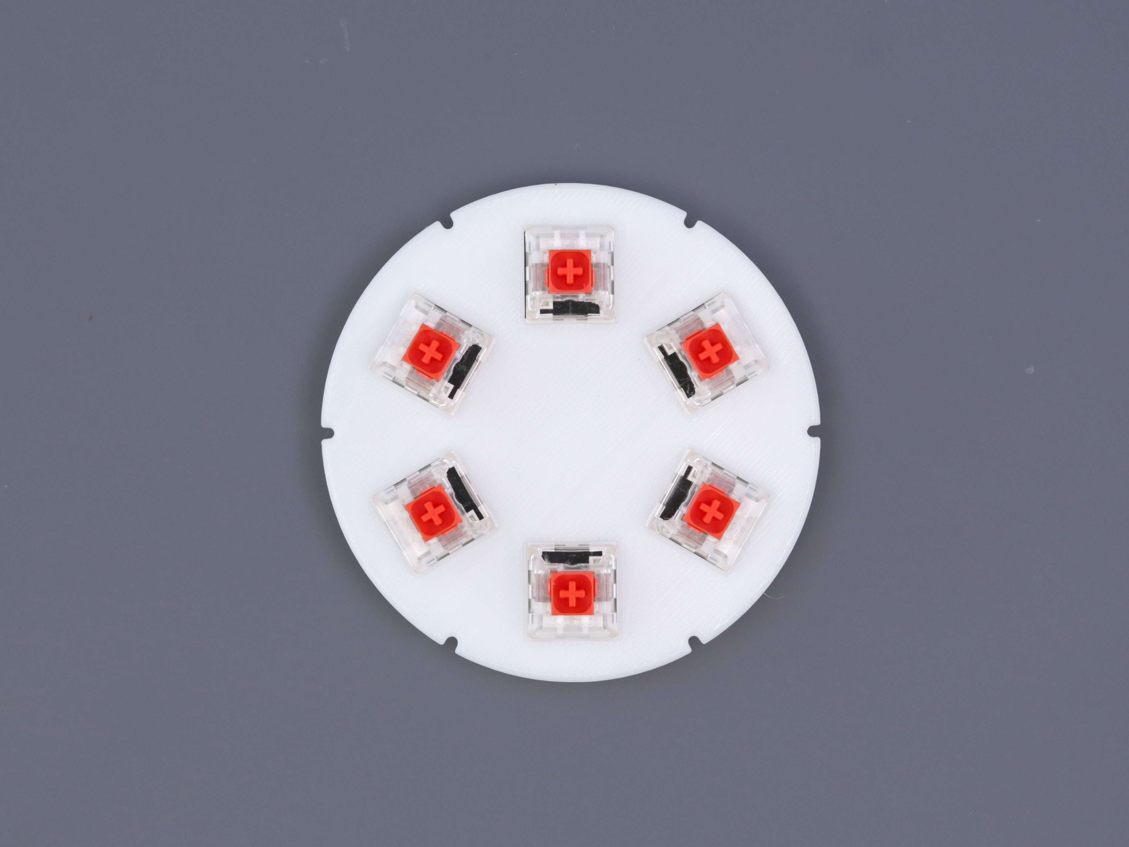3d_printing_switches-plate-installed-top.jpg