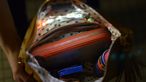 Interior Purse Light