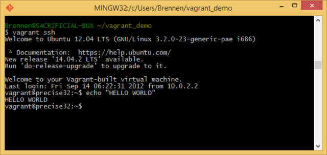 A Quick Linux VM on Windows with Vagrant