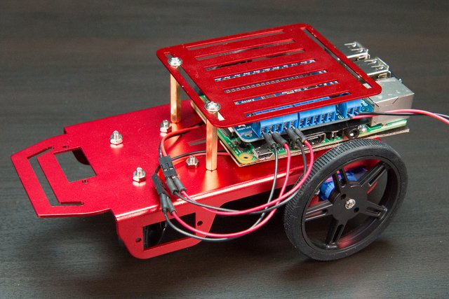 Simple Raspberry Pi Robot